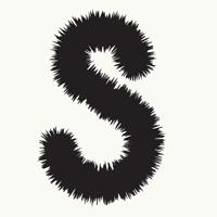 S Font Beginner